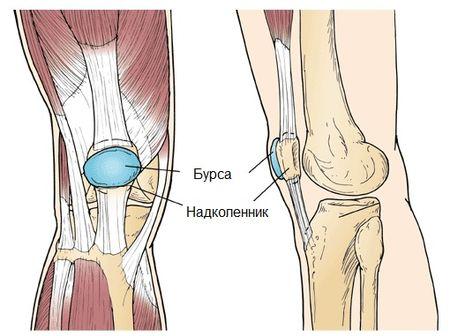 Por qué el masaje levanta la pierna debajo de la rodilla? Local y ...