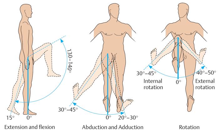 Lo que duele las articulaciones de la cadera y la rodilla. Problemas ...
