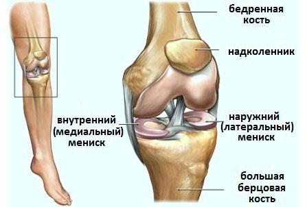 Болит колено и подгибается при ходьбе что делать аксиальный снимок локтевого сустава