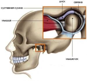 Чувство онемения в височяно-челюстгом суставе разрыв связок плечевого сустава операция